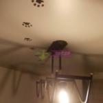 Художественная роспись натяжных потолков